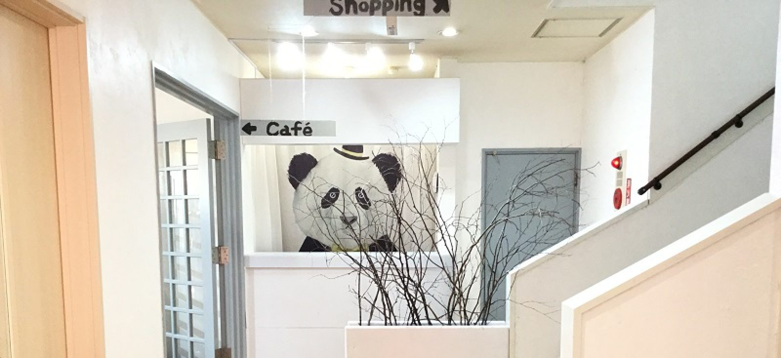 Cafe Restaurant & Shopping|Hana-Japan Project